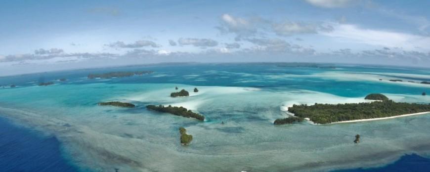 Cómo elegir agencia de viajes de buceo. 7 consejos a tener en cuenta