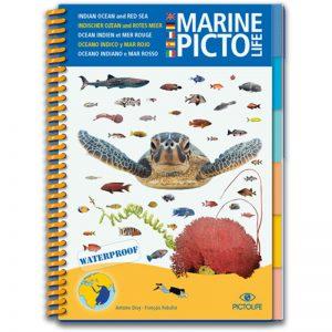 Marine PICTOLIFE Mar Rojo y Océano Indico