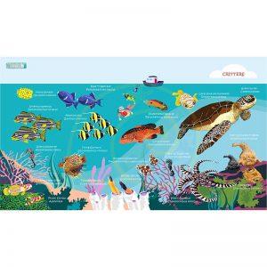 Toalla Tortuga y peces de arrecife - Grande 80x140 - ecotiendabuceo Oceanarium
