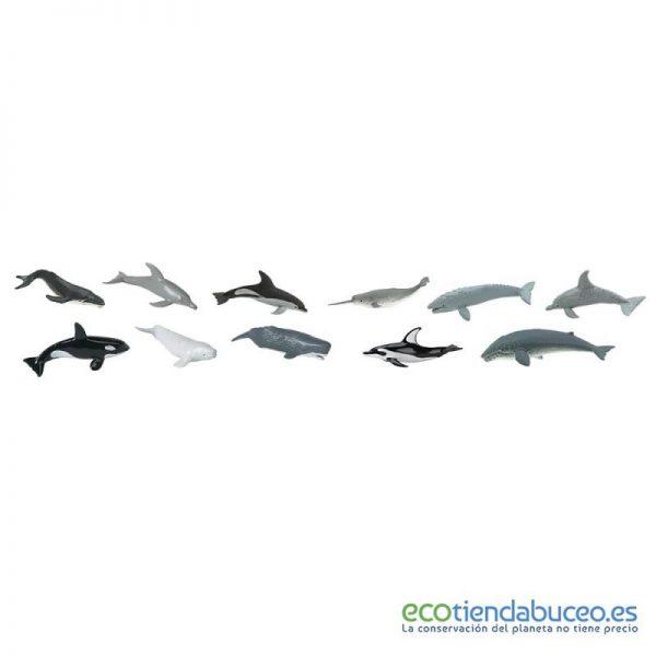 Tubo ballenas y delfines - Safari Ltd.