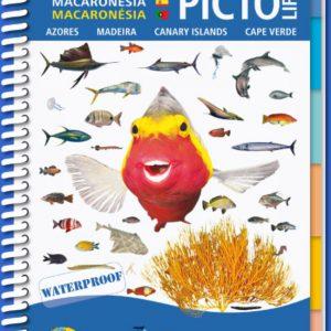 Marine Pictolife Macaronesia Islas Canarias