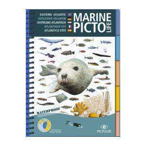 Marine PICTOLIFE Atlántico Este